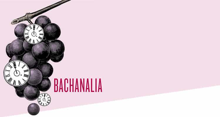 Bachanalia cover design for Ars Lyrica Houston | Designed by Field of Study: A branding and graphic design consultancy | Houston TX | Jennifer Blanco & John Earles