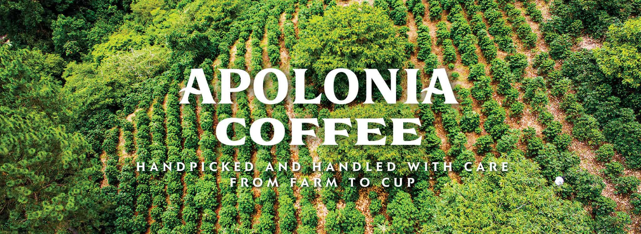 Masthead banner for Apolonia Coffee | Designed by Field of Study: A branding and graphic design consultancy | Houston TX | Jennifer Blanco & John Earles